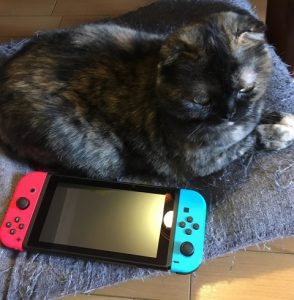 ネコとの対比